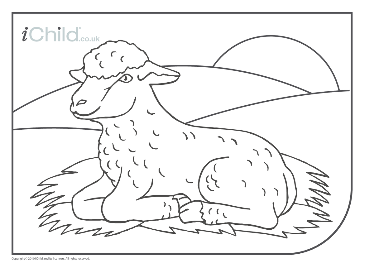 Spring Lamb colouring picture